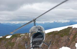 alaska wildlife helicopter